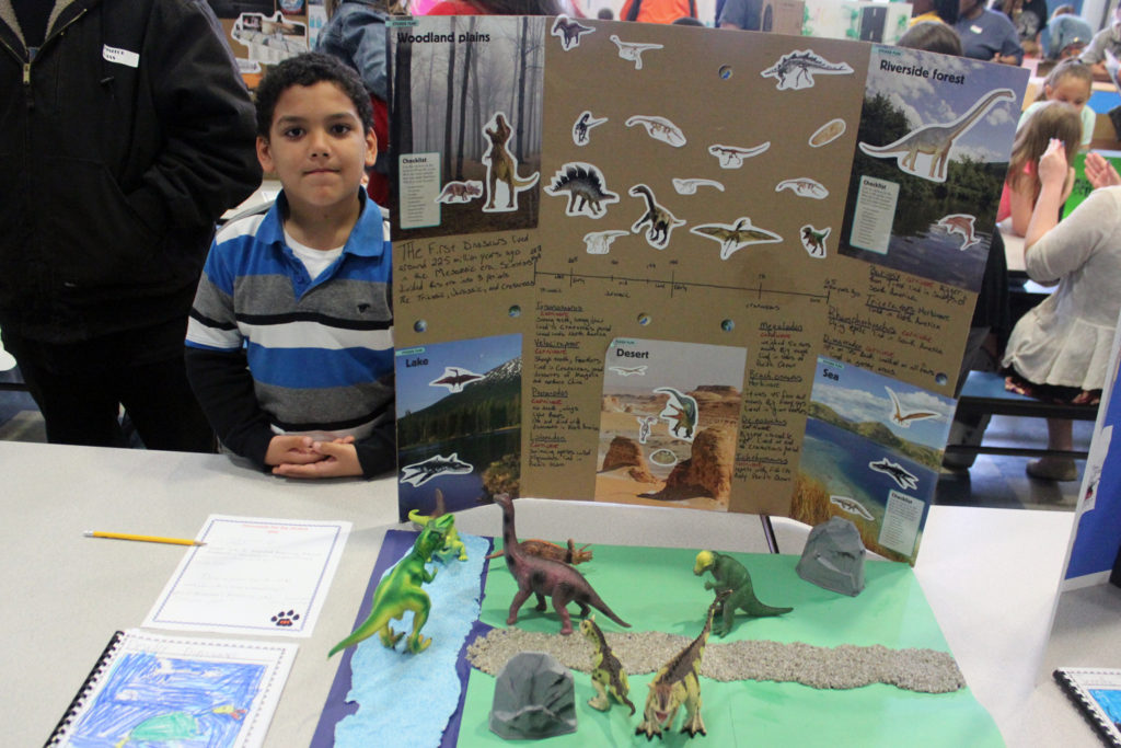 Student with display on dinosaurs