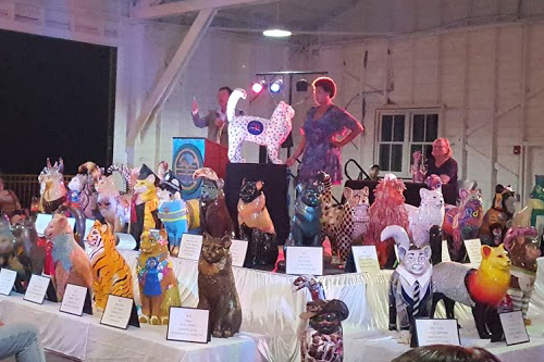 Pawprint cat being auctioned off