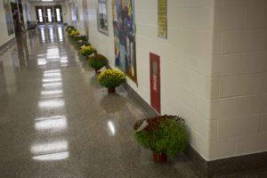 mums in school hallway