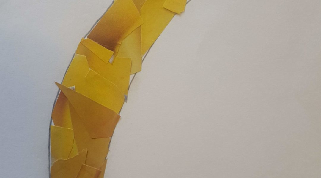 collage image of banana