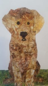 collage image of dog