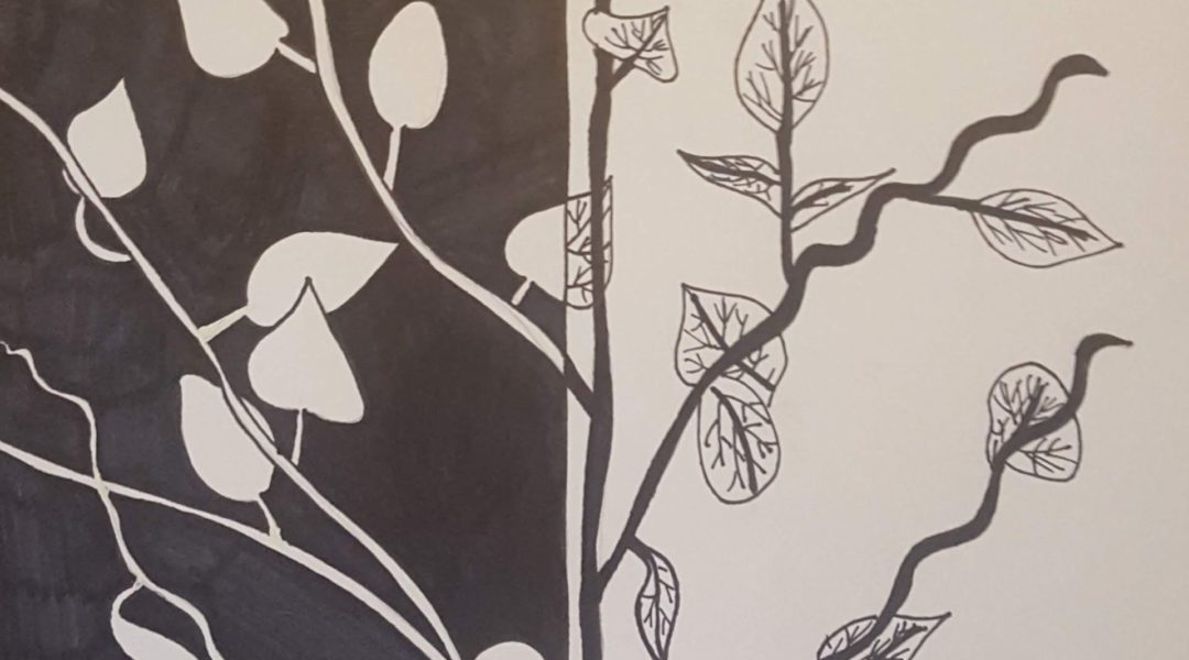 drawing of plant with leaves