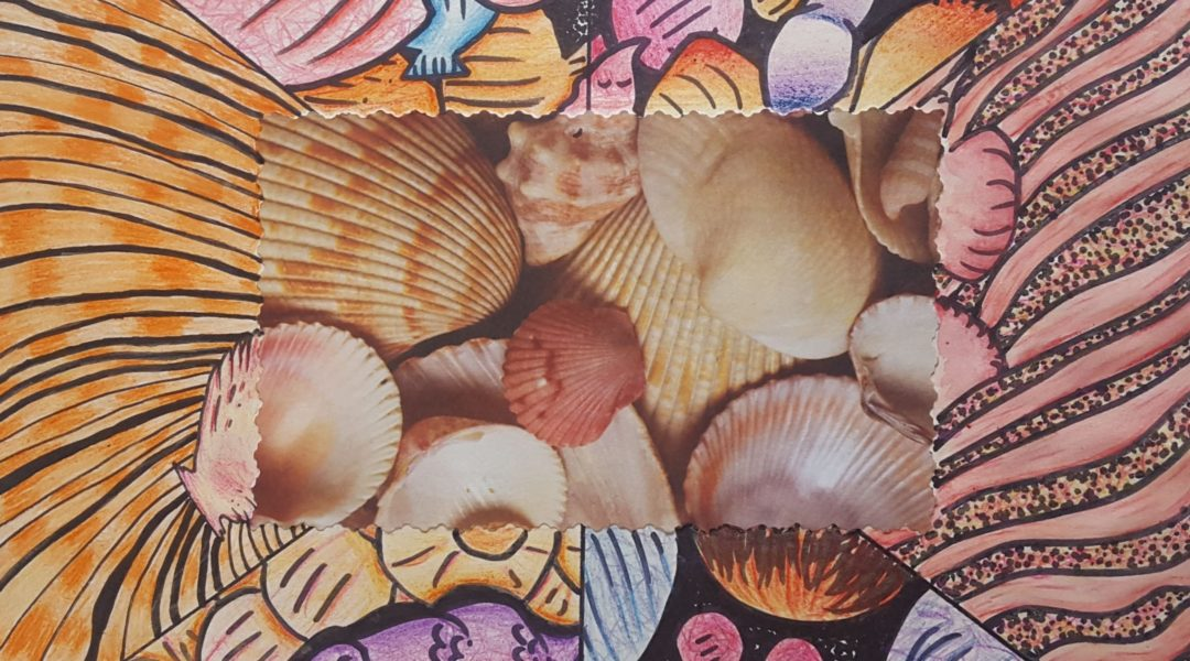 collage image of sea shells