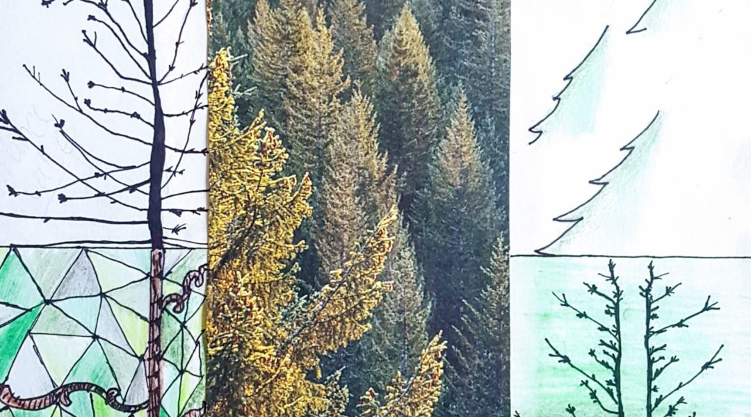 collage image of trees